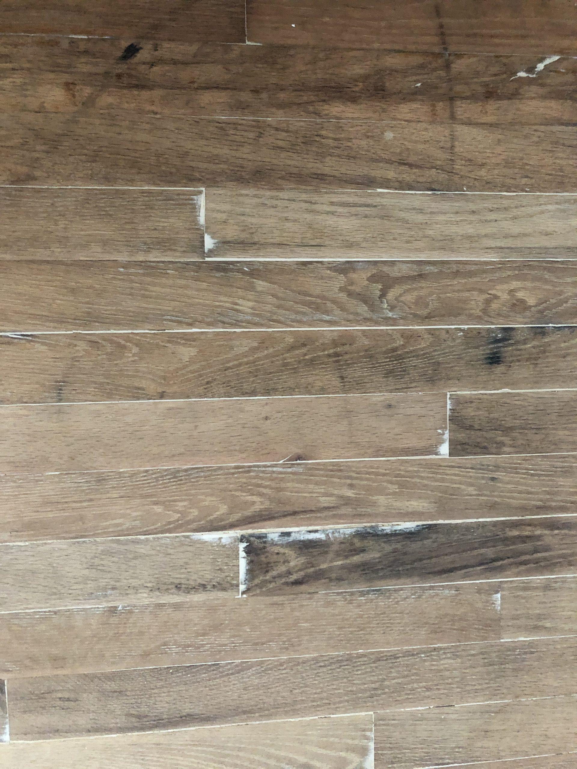 wood filler after sanding